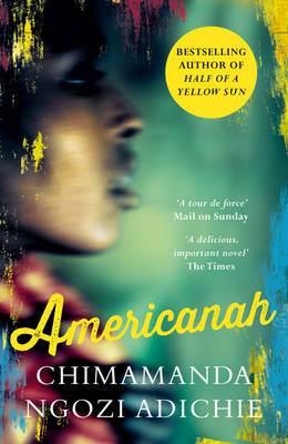 Americanah Essay Format - image 8